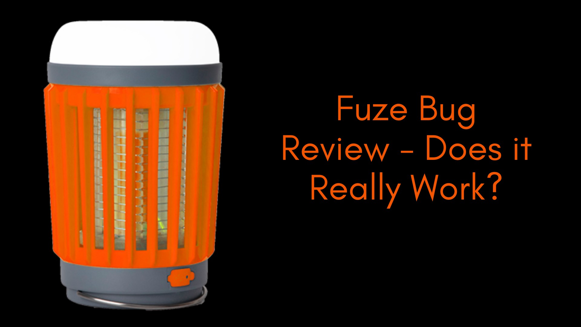 What Are The Important Aspects To Consider At The Time Of Buying Fuze Bug?